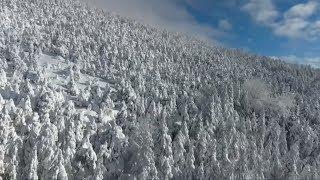 WINTER KOMMT MIT MACHT: Teile von Europa versinken im Schnee