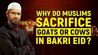 Why do Muslims Sacrifice Goats or Cows in Bakri Eid? - Dr Zakir Naik