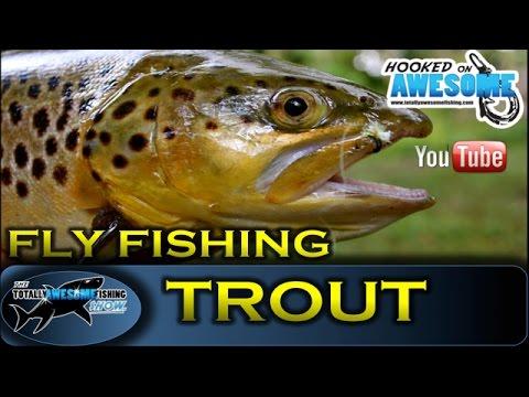 Fly fishing JUNGLE STYLE! - TAFishing Show