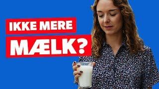 Er det virkelig sundt at drikke mælk?