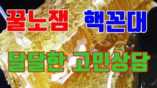 사주 타로 육효 고민상담 맛집 답답하면 드루와~
