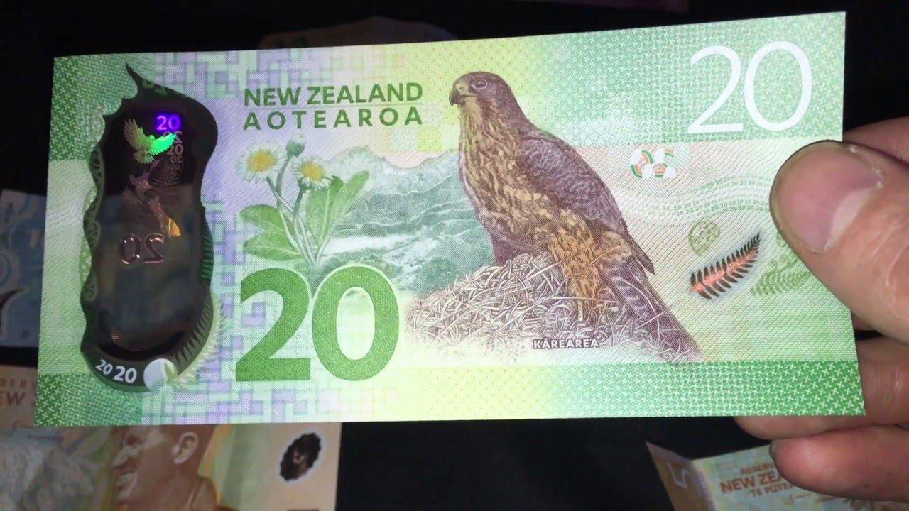 New Zealand Money 20 50