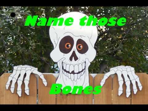name those bones - YouTube