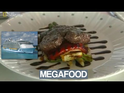 Oasis of the Seas Megafood Documentary