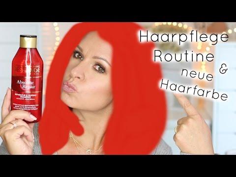 Haarpflege Routine & neue Haarfarbe / Mamacobeauty / Dessange UdPP