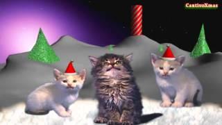 Wesołych Świąt - Spiewające kotki