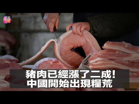 豬肉漲價了!中國開始出現糧荒?貿易戰之後是貨放貸戰,中美打鬥繼續;不想被goolge定位追蹤該怎麼辦?(明鏡之聲2018年8月15日-1)