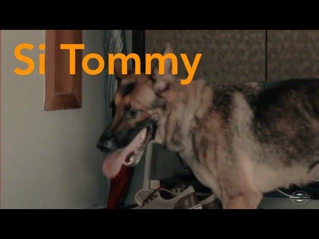 PFK  2016 Short Film - Si Tommy