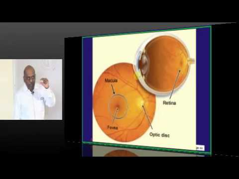NEETPG Coaching DNB Ophthalmology Topic 01 Anatomy Part 02