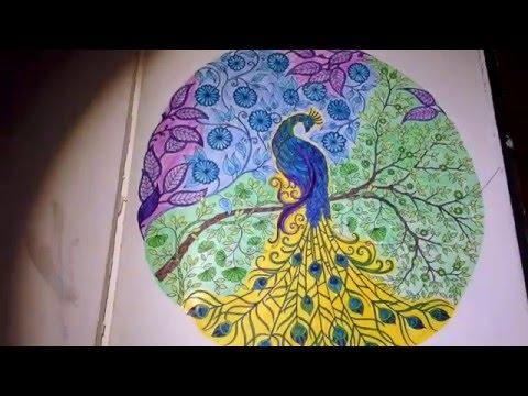 Secret Garden Coloring Book For Adults Peacock