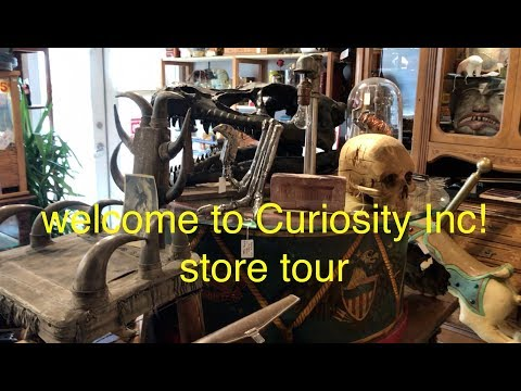Welcome to Curiosity Incorporated! our own store tour :)