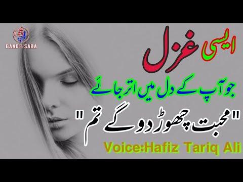 Heart Touching Poetry|Mohabbat Chorr Do Ge Tum|Sad Ghazal|Hindi Poetry|By Hafiz Tariq Ali|urdu Sad P
