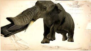 10 ANIMALES Que Estarás Muy FELIZ De Que Estén Extintos