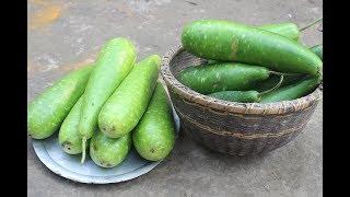 Traditional village food Lau taki ghonto recipe