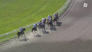 Vidéo de la course PMU PRIX DU LAUTIN