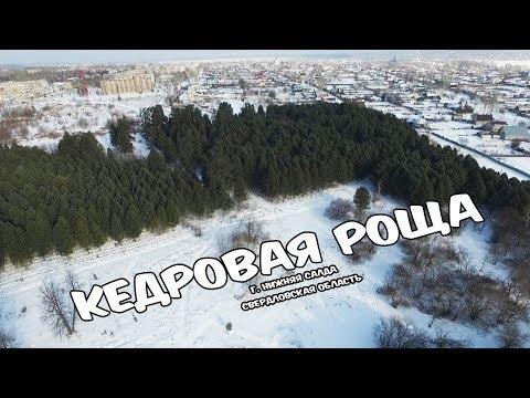 [Урал 4К] Кедровая роща. Нижняя Салда
