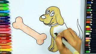 Come disegnare e colorare cane 🍖 | Colori | Disegno | Colorare | Come colorare per bambini