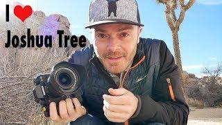 I (Heart) J Tree - Landscape Photography in Joshua Tree National Park