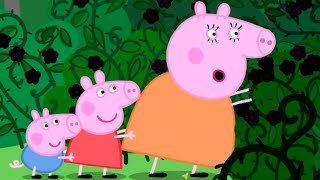 Peppa Pig Official Channel | Peppa Pig Visits the Mystery Fountain