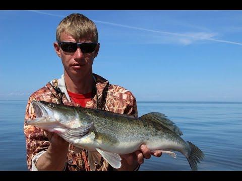 лучшие воблеры для троллинга на рыбинском водохранилище