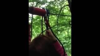 Zip wire go ape Thumbnail