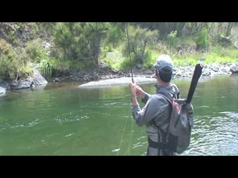 New zealand backcountry fly fishing for trophy trout for Backcountry fly fishing