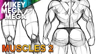 How To Draw MUSCLE BACK & LEGS