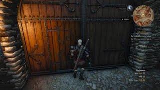 The Witcher 3: Wild Hunt Get Junior Guards Glitch - Help