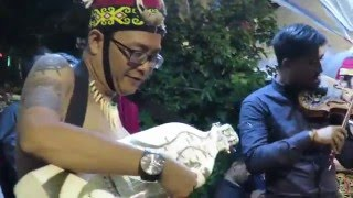 Keren! Biola VS 'Sape' Alat musik tradisional dayak (MUSIK TRADISIONAL INDONESIA)