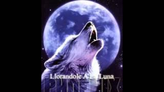Baixar Llorandole A La Luna - Phoenix