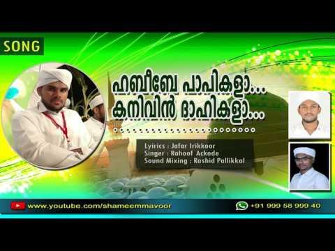 ഹബീബേ പാപികളാ... കനിവിന് ദാഹികളാ... | RAHOOF ACKODE | LATEST ISLAMIC MADHU SONG