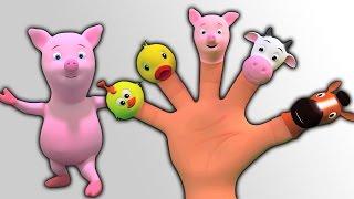 Dedo de la familia | Canciones para niños | Animal Finger Family |Finger Family Rhymes