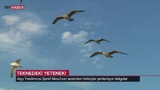 Hayat Tadında/Balıkçılar 2. Bölüm-Nuri Kanburoğlu ve mürettebatı