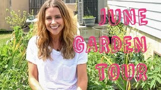 June Garden Tour: Celery, Peas, Carrots, Garlic, Beets, Mystery Plants and More!