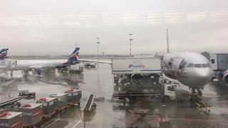 Полет Москва✈️Майами на самолете AIRBUS A330 FLIGHT MOSCOW-MIAMI AEROFLOT