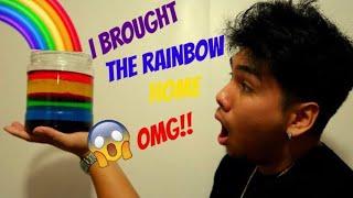 OMG I BROUGHT A RAINBOW HOME!![DIY]
