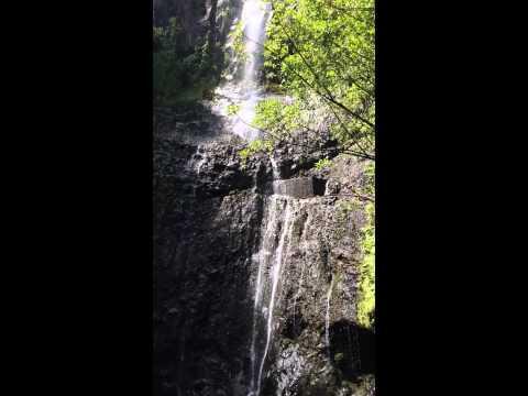 Seven Sacred Pools Hana Highway