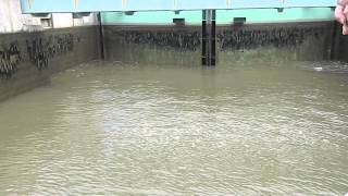 Lock Being Drained