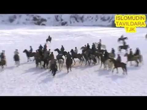 МУСОБИКАИ БУЗКАШИ ДАР ДЕХОТИ ЧИЛДАРА -ТАВИЛДАРА 05.01.2020.