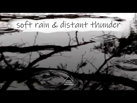 Soft Rain and Distant Thunder | Relax, Sleep | Ambient Rain Sounds