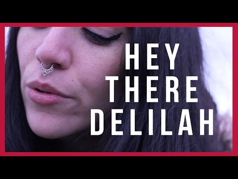 hey there delilah gay song version