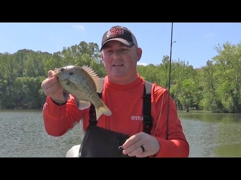FOX Sports Outdoors SouthWEST #10 - 2017 Kentucky Lake, Tennessee Shellcracker Fishing