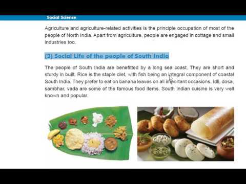 Gujarat Board Class 7 Chapter 9 India Social Life