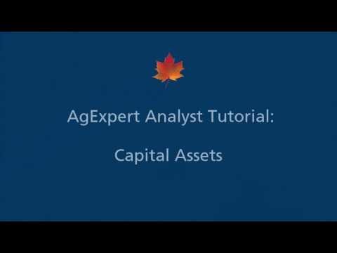 5) AgExpert Analyst Tutorial - Capital Assets