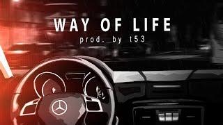 """WAY OF LIFE"" - Bushido ✖️ Fler ✖️ EPIC/BLACKFRIDAY Type Beat (prod. by t53)"