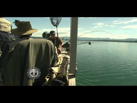 Troll For Kokanee Salmon At Heron Lake With Don Flanagan And Sons
