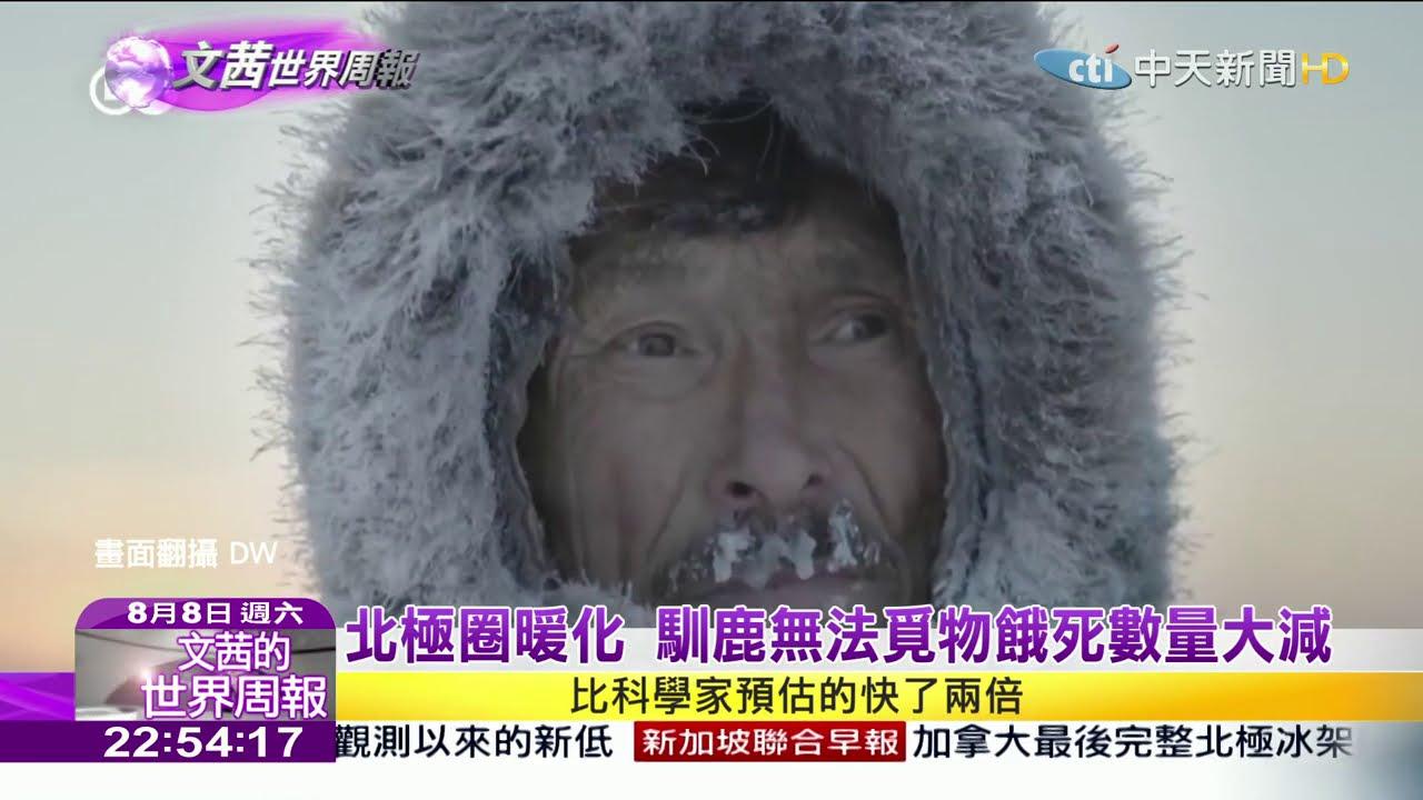 2020.08.08【文茜世界周報】北極圈暖化 馴鹿無法覓物餓死數量大減