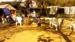 edu tirolina camping marbella playa (2 parte)
