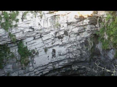 Cave of the Swallows (Sótano de las Golondrinas) Mexico / Пещера ласточек Мексика