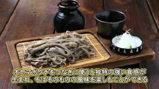 幻の富倉そばと箱笹寿司作り〜レッツゴーまちっぷちゃん〜